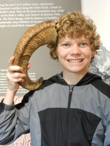 horn or antler